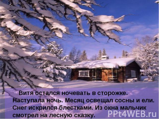 Витя остался ночевать в сторожке. Наступала ночь. Месяц освещал сосны и ели. Снег искрился блестками. Из окна мальчик смотрел на лесную сказку.