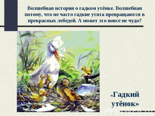 Волшебная история о гадком утёнке. Волшебная потому, что не часто гадкие утята превращаются в прекрасных лебедей. А может это вовсе не чудо? «Гадкий утёнок»