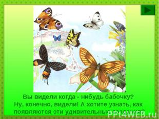 Вы видели когда - нибудь бабочку? Ну, конечно, видели! А хотите узнать, как появ