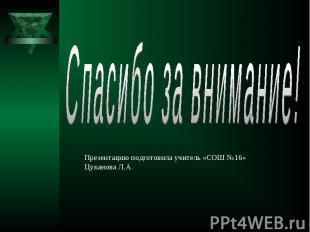 Спасибо за внимание! Презентацию подготовила учитель «СОШ №16» Цуканова Л.А.