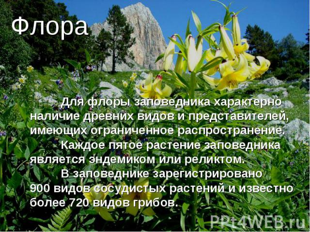 Флора Для флоры заповедника характерно наличие древних видов и представителей, имеющих ограниченное распространение. Каждое пятое растение заповедника является эндемиком илиреликтом. В заповеднике зарегистрировано 900видовсосудистых растений и из…