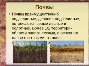 ПочвыПочвы преимущественно подзолистые, дерново-подзолистые, встречаются серые л