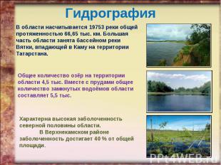 Гидрография В области насчитывается 19753 реки общей протяженностью 66,65 тыс. к