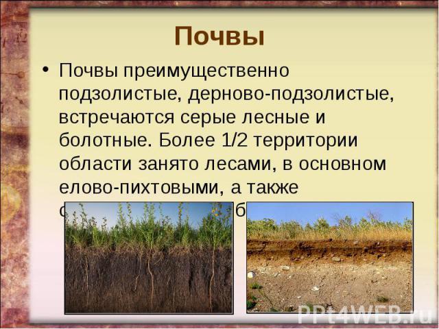 ПочвыПочвы преимущественно подзолистые, дерново-подзолистые, встречаются серые лесные и болотные. Более 1/2 территории области занято лесами, в основном елово-пихтовыми, а также смешанными (ель, береза, сосна).