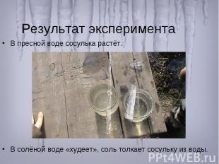 Результат эксперимента В пресной воде сосулька растёт. В солёной воде «худеет»,