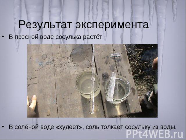 Результат эксперимента В пресной воде сосулька растёт. В солёной воде «худеет», соль толкает сосульку из воды.