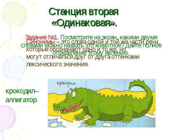 Станция вторая «Одинаковая».Синонимы – это слова одной и той же части речи, которые обозначают одно и то же, но могут отличаться друг от друга оттенками лексического значения. крокодил– аллигатор