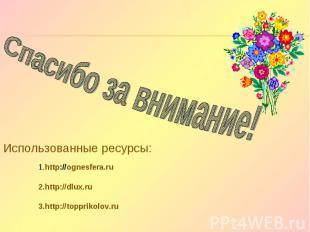Спасибо за внимание! Использованные ресурсы: 1.http://ognesfera.ru 2.http://dlux