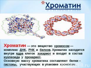 ХроматинХроматин— это вещество хромосом— комплекс ДНК, РНК и белков. Хроматин
