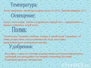 Температура: Летом умеренная, зимой прохладная, около 15-16°C. Зимний минимум 12