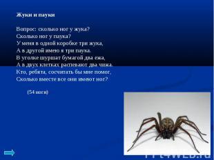 Жуки и пауки Вопрос: сколько ног у жука? Сколько ног у паука? У меня в одной кор
