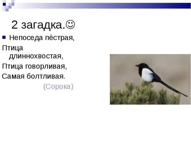 2 загадка. Непоседа пёстрая, Птица длиннохвостая, Птица говорливая, Самая болтливая. (Сорока)