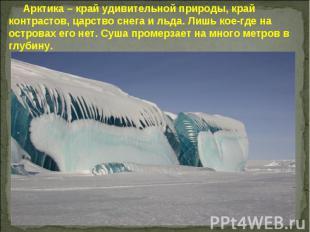 Арктика – край удивительной природы, край контрастов, царство снега и льда. Лишь