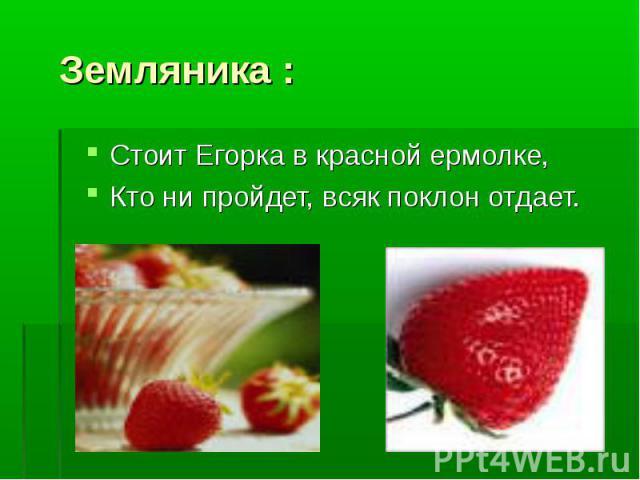 Земляника : Стоит Егорка в красной ермолке, Кто ни пройдет, всяк поклон отдает.