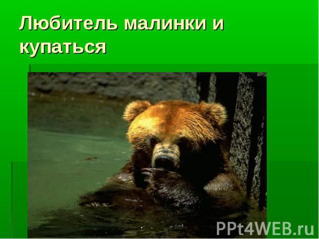 Любитель малинки и купаться