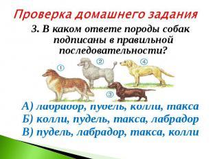 Проверка домашнего задания3. В каком ответе породы собак подписаны в правильной