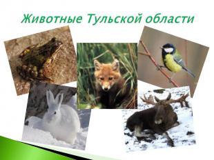 Животные Тульской области