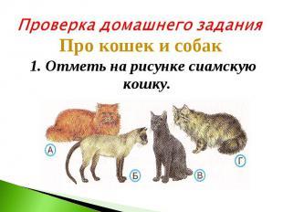 Проверка домашнего заданияПро кошек и собак 1. Отметь на рисунке сиамскую кошку.