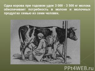 Одна корова при годовом удое 3 000 - 3 500 кг молока обеспечивает потребность в
