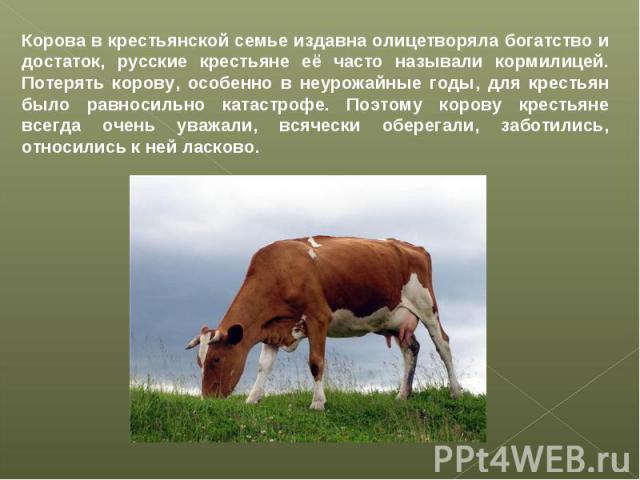 Корова в крестьянской семье издавна олицетворяла богатство и достаток, русские крестьяне её часто называли кормилицей. Потерять корову, особенно в неурожайные годы, для крестьян было равносильно катастрофе. Поэтому корову крестьяне всегда очень уваж…