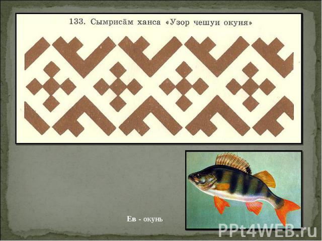 Ев - окунь