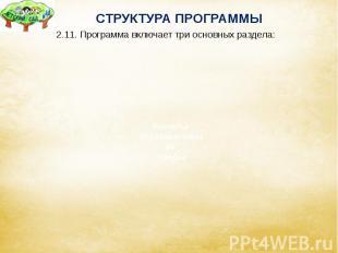СТРУКТУРА ПРОГРАММЫ 2.11. Программа включает три основных раздела: