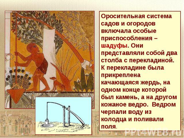 Оросительная система садов и огородов включала особые приспособления – шадуфы. Они представляли собой два столба с перекладиной. К перекладине была прикреплена качающаяся жердь, на одном конце которой был камень, а на другом кожаное ведро. Ведром че…