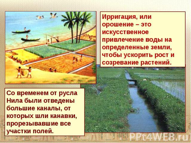 Ирригация, или орошение – это искусственное привлечение воды на определенные земли, чтобы ускорить рост и созревание растений.