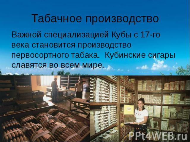 Табачное производство Важной специализацией Кубы с 17-го века становится производство первосортного табака. Кубинские сигары славятся во всем мире.