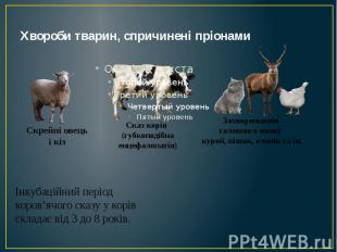 Хвороби тварин, спричинені пріонами