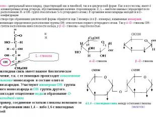 Глюкоза – центральный моносахарид, существующий как в линейной, так и в цикличес