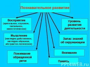 Восприятие (зрительное, слуховое, тактильное, кинестетическое) Запас знаний об о