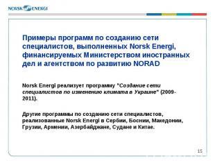* Примеры программ по созданию сети специалистов, выполненных Norsk Energi, фина