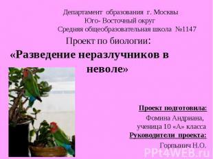 Департамент образования г. Москвы Юго- Восточный округ Средняя общеобразовательн