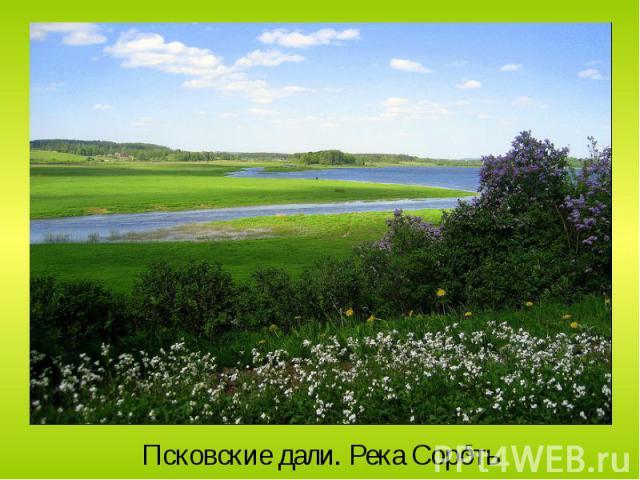 Псковские дали. Река Сороть