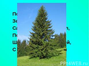 По округе славитсяПо округе славитсяЗелёная красавица:Сарафан - как колокол,По з