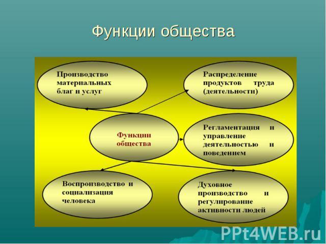 Функции общества