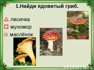 1.Найди ядовитый гриб. лисичка мухомор маслёнок