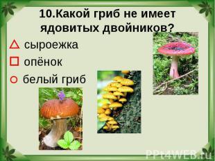 10.Какой гриб не имеет ядовитых двойников? сыроежка опёнок белый гриб