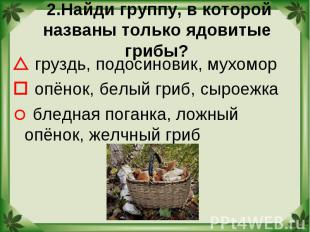 2.Найди группу, в которой названы только ядовитые грибы? груздь, подосиновик, му