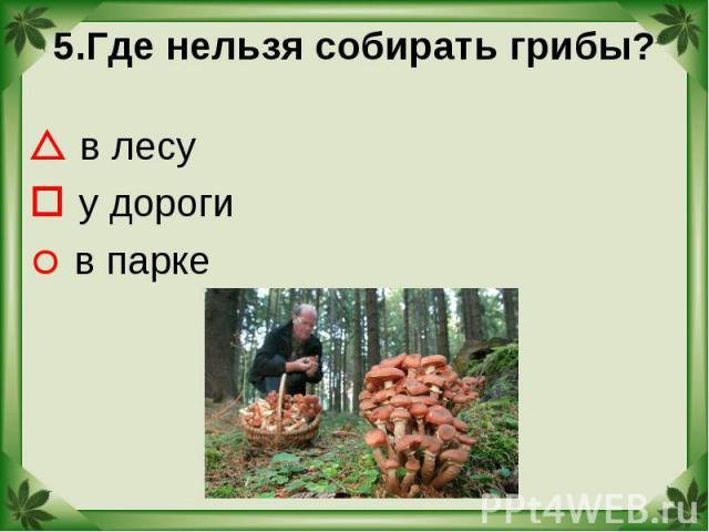 5.Где нельзя собирать грибы? в лесу у дороги в парке