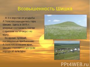 Возвышенность Шишка В 3-х верстах от усадьбы Л.Толстого находилась гора Шишка. З