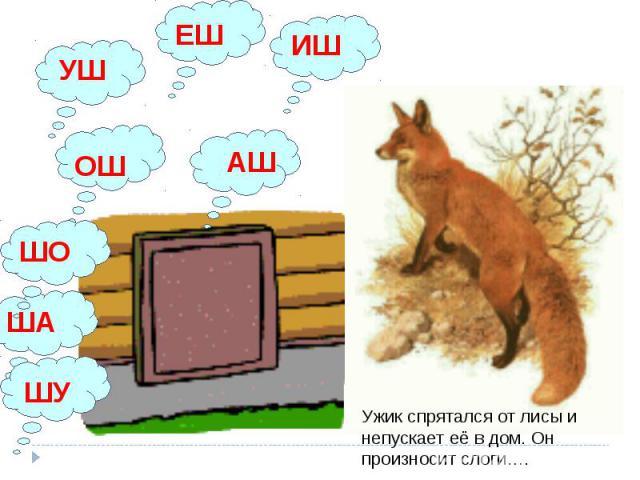 АШ ОШ ЕШ ИШ УШ Ужик спрятался от лисы и непускает её в дом. Он произносит слоги…. ШО ША ШУ