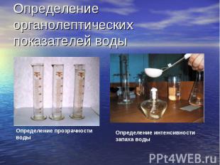 Определение органолептических показателей воды Определение прозрачности воды Опр