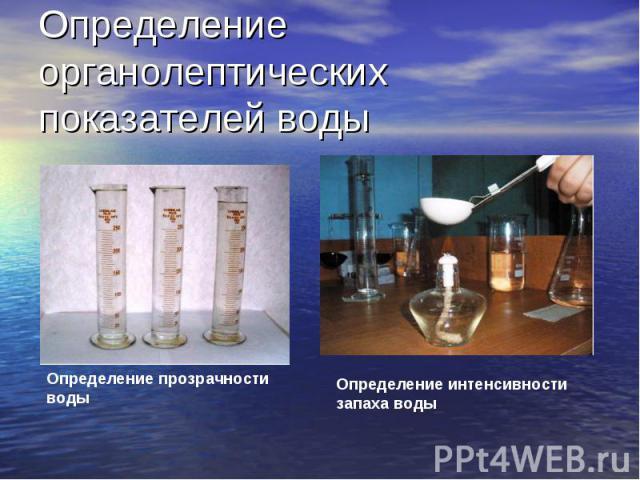 Определение органолептических показателей воды Определение прозрачности воды Определение интенсивности запаха воды