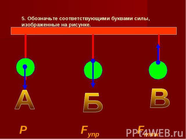 5. Обозначьте соответствующими буквами силы, изображенные на рисунке. Р Fупр Fтяж