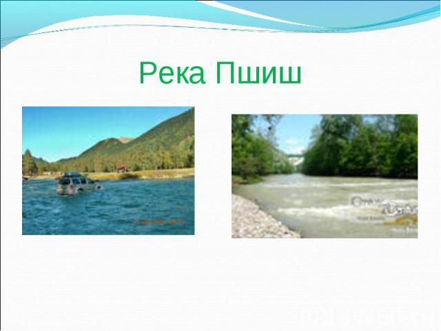 Река Пшиш