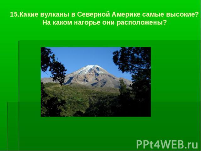 15.Какие вулканы в Северной Америке самые высокие? На каком нагорье они расположены?