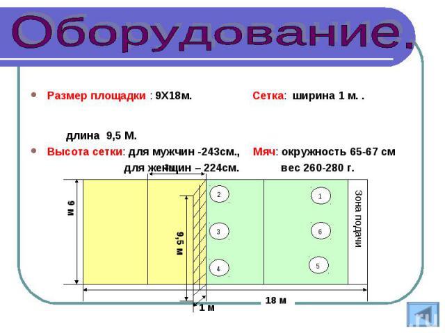 Размер площадки : 9Х18м. Сетка: ширина 1 м. . длина 9,5 М.Размер площадки : 9Х18м. Сетка: ширина 1 м. . длина 9,5 М.Высота сетки: для мужчин -243см., Мяч: окружность 65-67 см для женщин – 224см. вес 260-280 г.