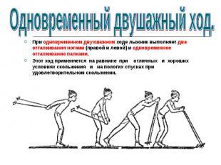 При одновременном двухшажном ходе лыжник выполняет два отталкивания ногами (прав